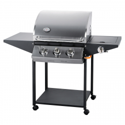 Barbecue gas grill Phoenix